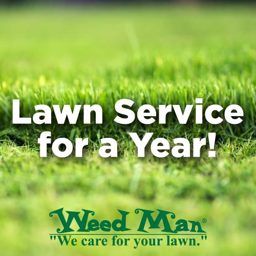 Lawn Service for a Year