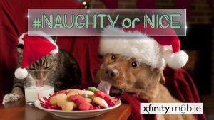 Naughty or Nice Pet Photos