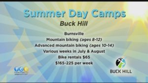 Summer Day Camp Roundup