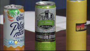 Seltzer Tasting and Grill Fest 2021