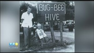 Gas Tank Trip: Bug Bee Hive Resort