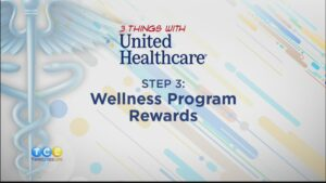 Health Insurance Wellness Program