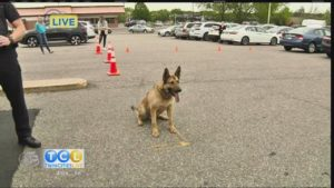 TCL in Your Town: Eagan K9 Unit