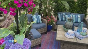 Outdoor Spaces with Bachman's