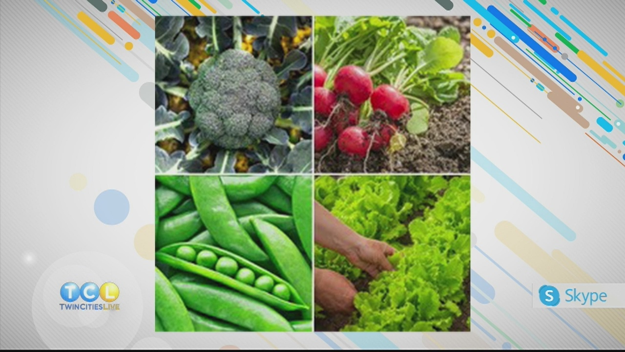 Your Own Victory Garden